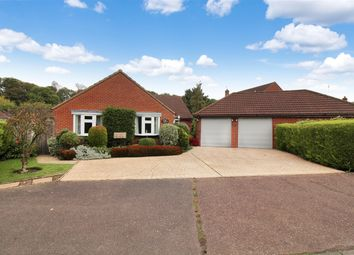 Thumbnail 4 bedroom bungalow for sale in Main Road, North Burlingham, Norwich