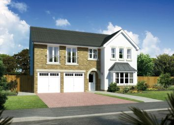 "Thumbnail 5 bed detached house for sale in ""Melton"" at Hunter Street, Auchterarder"