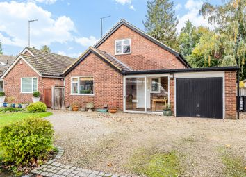 Thumbnail 4 bed detached bungalow for sale in Valley Road, Northchurch, Berkhamsted