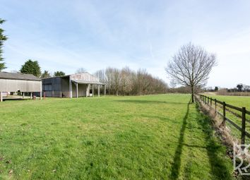 Thumbnail 3 bed detached house for sale in Popes Green Lane, Layham, Hadleigh, Suffolk