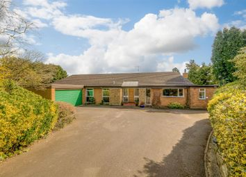 Thumbnail 4 bed detached bungalow for sale in The Beeches, Pattishall, Towcester