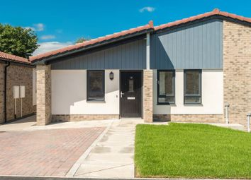 Thumbnail 2 bedroom semi-detached bungalow for sale in Mariners View, Amble, Morpeth