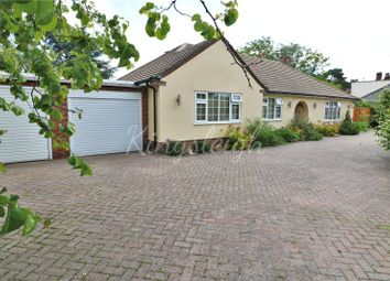 Thumbnail 4 bed detached bungalow for sale in The Street, Ardleigh, Colchester, Essex