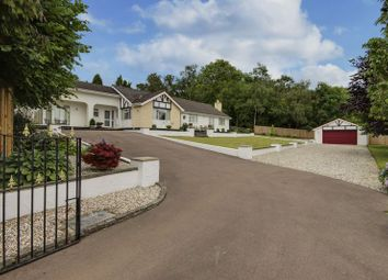 Thumbnail 5 bed detached bungalow for sale in Catsash Road, Langstone, Newport