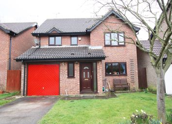 Thumbnail 4 bed detached house for sale in Redbridge, Werrington
