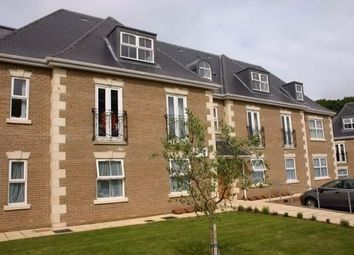Thumbnail Property to rent in Church Hill, Newhaven