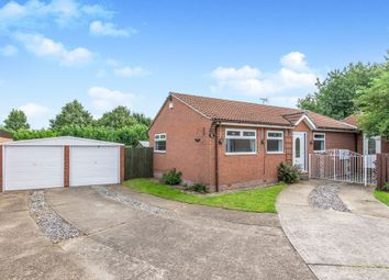 Thumbnail 3 bed detached bungalow for sale in Brampton Lane, Armthorpe, Doncaster
