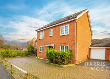 Thumbnail 4 bed detached house to rent in Samian Close, Heybridge, Maldon