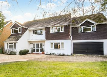 Thumbnail 5 bed property to rent in The Fairway, Weybridge