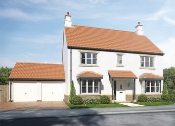 Thumbnail 4 bedroom detached house for sale in Plot 18, West Farm, Faulkland, Somerset