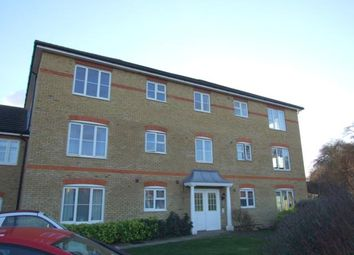 Thumbnail 2 bedroom property to rent in Grampian Place, Great Ashby