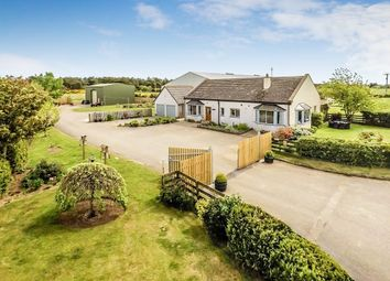 Thumbnail 3 bed bungalow for sale in Fearn, Tain