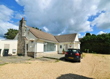 Thumbnail 3 bed bungalow to rent in Fir Tree Close, St Leonards, Ringwood
