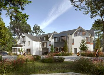 The Pines, Royston Road, Wendens Ambo, Saffron Walden CB11. 1 bed flat for sale