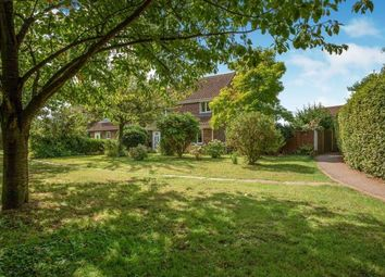 Thumbnail 3 bed detached house for sale in Thurlton, Norwich, Norfolk