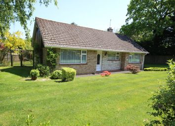 Thumbnail 3 bed detached bungalow for sale in Brook Avenue North, New Milton