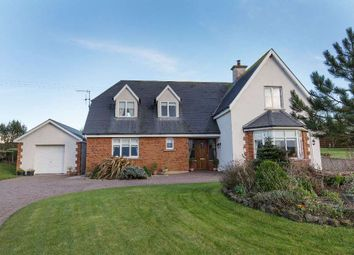 Thumbnail 4 bedroom detached house for sale in 5 Pairc Na Chrosaire, Ring, Waterford