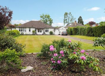 Thumbnail 3 bed bungalow for sale in Leatherhead Road, Ashtead