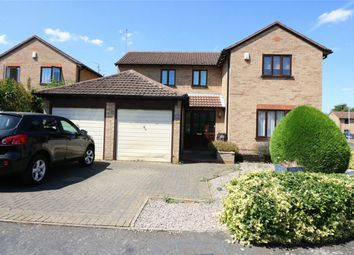 Thumbnail 4 bed detached house for sale in Chestnut Way, Market Deeping, Lincolnshire