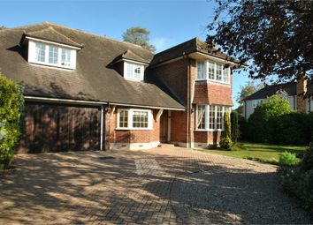 Thumbnail 4 bedroom detached house for sale in Roxwell Road, Chelmsford, Essex