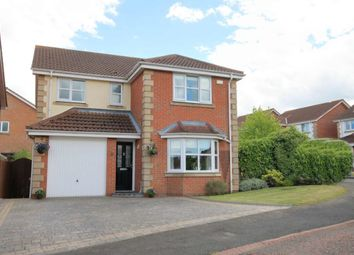 Thumbnail 4 bed detached house for sale in Aberwick Drive, Chester Le Street