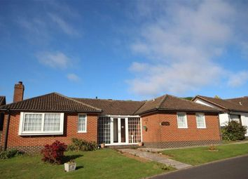 Thumbnail 3 bedroom detached bungalow for sale in Rippon Close, Brixham Heights, Brixham