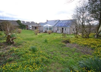 Thumbnail 2 bed detached bungalow for sale in Well Road, Waterston, Milford Haven