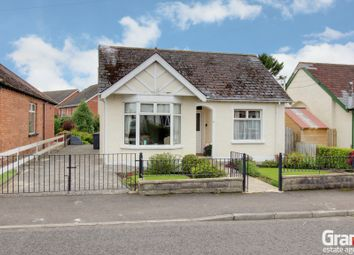 Thumbnail 3 bedroom detached bungalow for sale in Reaville Park, Dundonald
