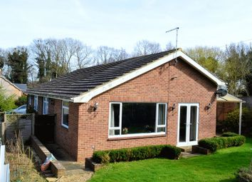 Thumbnail 2 bed detached bungalow for sale in Warehorne Road, Hamstreet, Ashford