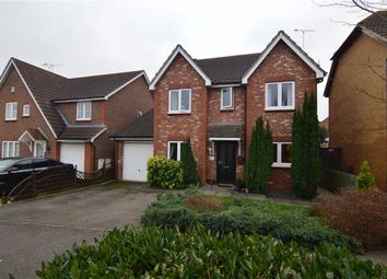 Thumbnail 4 bed detached house for sale in Farne Drive, Wickford, Essex