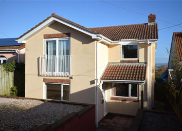 Thumbnail Detached house for sale in Long Lane, Ashcombe, Dawlish, Devon
