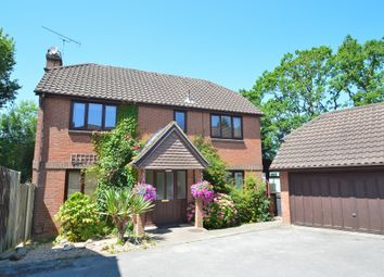 Thumbnail 4 bed detached house to rent in Burley Close, Chandler's Ford, Eastleigh
