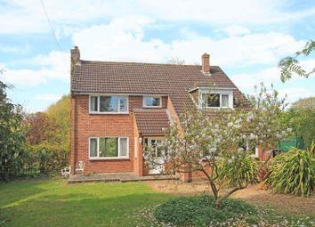 Thumbnail 4 bed detached house for sale in Nomansland, Salisbury