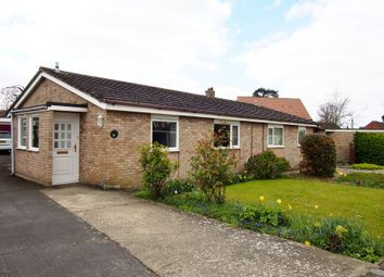 Thumbnail 2 bedroom semi-detached bungalow to rent in Orchard Way, Wymondham, Norfolk