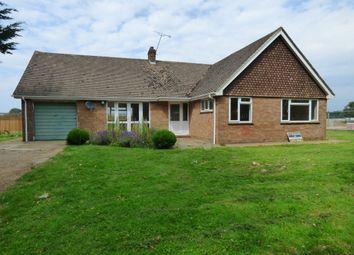 Thumbnail 3 bed detached bungalow to rent in Toddington Lane, Wick, Littlehampton