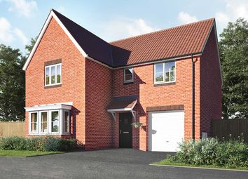 "4 bed detached house for sale in ""The Grainger"" at Halstead Road, Kirby Cross, Frinton-On-Sea CO13"