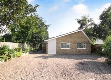 Thumbnail 4 bed detached bungalow for sale in Staithe Road, Martham, Great Yarmouth