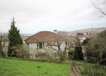 Thumbnail 4 bed detached house to rent in Rundle Road, Newton Abbot, Devon