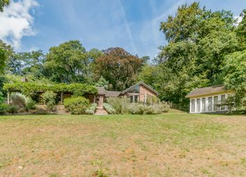 Thumbnail 4 bed detached bungalow for sale in Longdown Road, Lower Bourne, Farnham