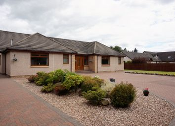 Thumbnail 3 bed detached bungalow for sale in Perth Road, Blairgowrie