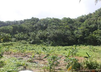 Thumbnail Land for sale in Newfoundland Estate, Newfoundland, Dominica
