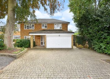 Thumbnail 4 bed detached house to rent in Blades Close, Leatherhead