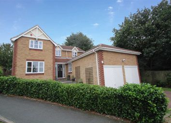 Thumbnail 4 bedroom detached house for sale in Wilding Road, Ipswich
