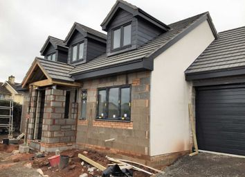 Thumbnail 3 bedroom detached house for sale in Kingsway Avenue, Paignton