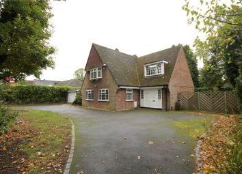 Thumbnail 4 bed detached house to rent in Christchurch Road, Virginia Water, Virginia Water, Surrey