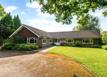 5 bed detached bungalow for sale in Lower Station Road, Newick, Lewes, East Sussex BN8