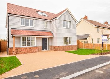 Thumbnail 4 bed detached house for sale in St Marys Road, Great Bentley, Colchester, Essex
