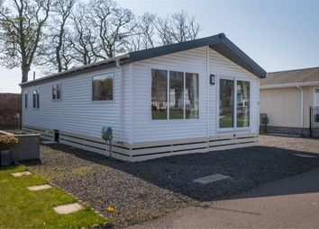 Thumbnail 2 bedroom mobile/park home for sale in Seaton Estate, Arbroath, Angus