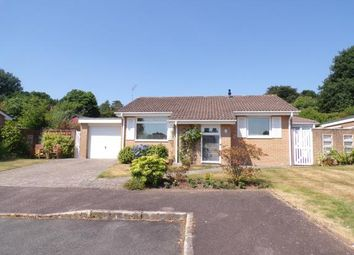 Thumbnail 2 bed bungalow for sale in West Hill, Ottery St. Mary, Devon