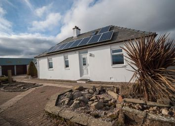 Thumbnail 3 bed bungalow to rent in Kinaldie Holdings, Arbroath